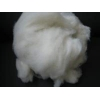 China Fine Sheep Wool Sheep Wool/Sheep Cashmere for sale