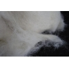 China Fine Sheep Wool Wool Combing Waste for sale