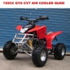 China 125-250CC ATV(CE&EEC) 150CC GY6 CVT Air Cooled Quad For Adult for sale