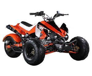 China Three Wheel ATV on sale