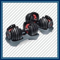 Gym  Bowflex SelectTech Dumbbell