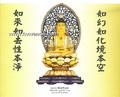 China Bronze statues SA-64 Sakyamuni Budd (SA-64 Sakyamuni Buddha) on sale