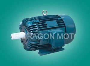 China Electric Motors AEEF IEC Standard Three-Phase Induction Motor on sale