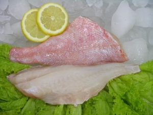 China Ocean Perch Products Ocean Perch Fillets wholesale