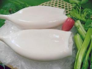 China Squid tube on sale
