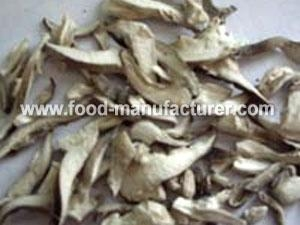 China Freeze Dried Mushroom Freeze Dried Oyster Mushroom Slice on sale
