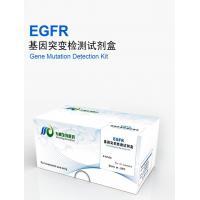 EGFR mutation test kit