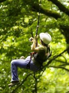 China Zip Wire Kits for use with Trees on sale
