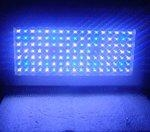 China LED Aquarium Light (S-300W) on sale