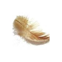Feather testing kits