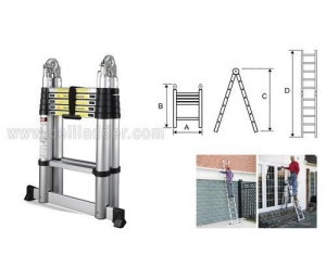 China Telescopic ladder on sale