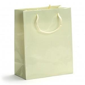 China Gloss Laminated Paper Shopping Bags on sale