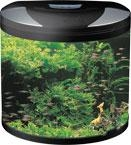 China SHA Series Glass Aquarium on sale