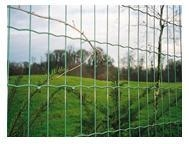 China wiremesh Euro welde.. Euro welded fence(Eurofence) on sale