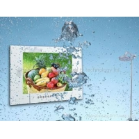 20.1inch waterproof lcd tv