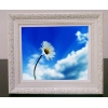 China wood digital photo frame-12 inch for sale