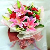 Carnations sea