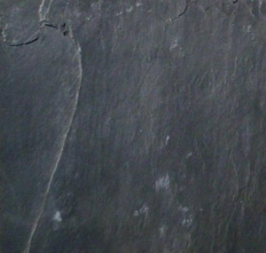 China Other natural stone Black Slate on sale
