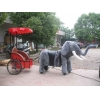 China The elephant pulls a cart for sale