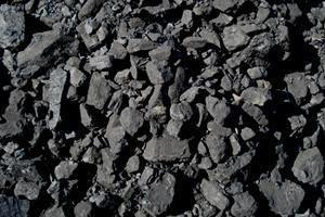 China Indonesia Coal on sale
