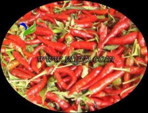 China chilli on sale
