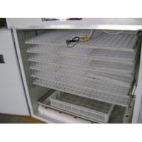 Quail egg incubators(CQ-1)