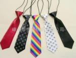 Kid's Necktie Bowtie