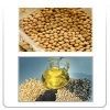 China Soyabean/Rapeseed - Meals and Oil for sale