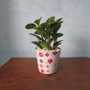 China Metal Flower pot HXM-003 on sale