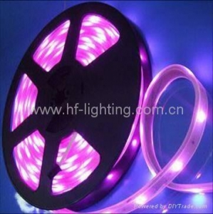 China LED 5050 Flexible Strip Light on sale