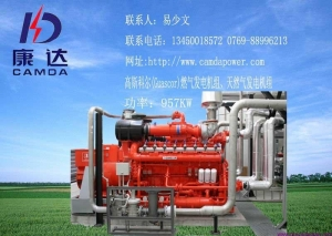 China Gas Generator Large and medium-sized farm biogas generators on sale