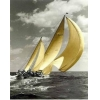 China Sail boats(262) S_Sailboat_CL3_05 for sale