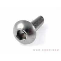 China Bolts and screws the first half in stainless steel hexagonal screws (round cup) on sale