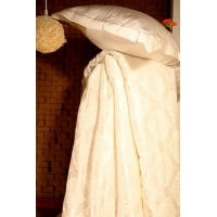 China Silk Filled Duvet(RB-sq-03) on sale