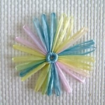 Flower & Bow variegated daisy 8cm