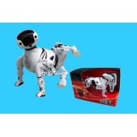 Other Remote Control Toys B32765