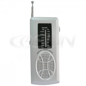 China Computer Accessories AM/FM Auto Scan Radio on sale