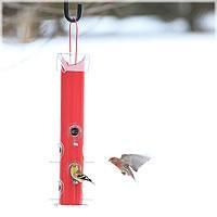 China Perky-Pet Red Metal Tube Bird Feeder on sale