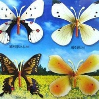 China Wooden Model Kit - Korean Butterflies on sale