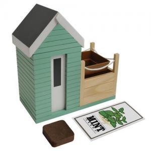 China Beach Hut Planter Gift Set on sale