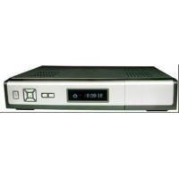 DVB Terrestrial