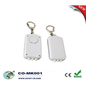 China Voice Recordable Keychain on sale