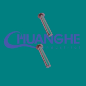 China stainless solid rivets on sale