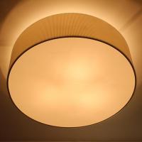 normal Ceiling lamp 【Name】:Normal ceiling lamp C2003