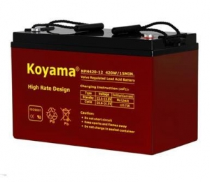 China High Rate AGM Battery on sale