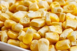 China Freeze Dried Sweet Corn on sale