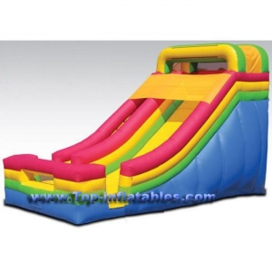China Hot Inflatables Single Lane Slide on sale