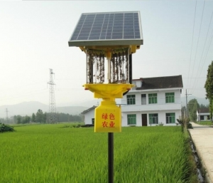 China Solar insecticidal lamp on sale