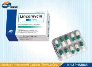 China Z201 Lincomycin Capsules on sale