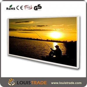 China IR heating panel ceiling or wall mounted freestanding 220v on sale
